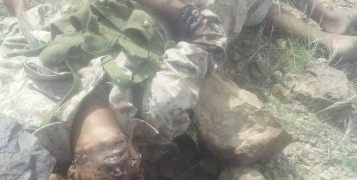 145 Militias killed, dozens injured in battles during September's 1st week