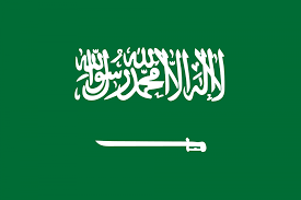 Saudi condemns Houthi denial of UN access to grains store in Yemen
