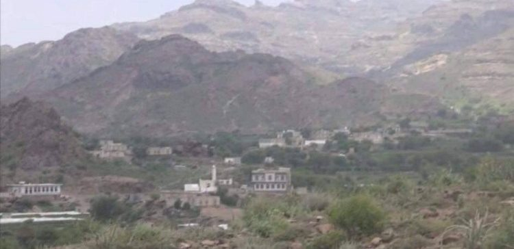Seven Houthi rebels killed, three captured in the north of Al-Dhale