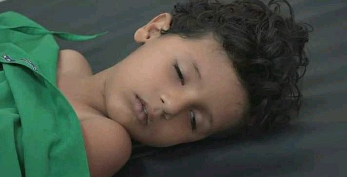 One child killed, another injured in Houthi-laid mine explosion