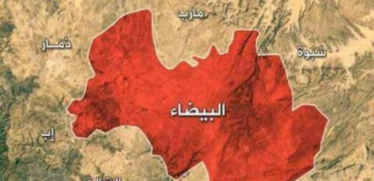 Houthi militia blows up three houses in Al-Bayda