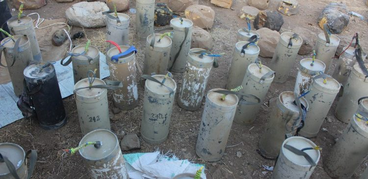 About 3,000 landmines removed in Saada