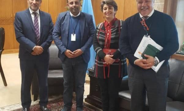 Cooperation between Ministry of Health and WHO discussed