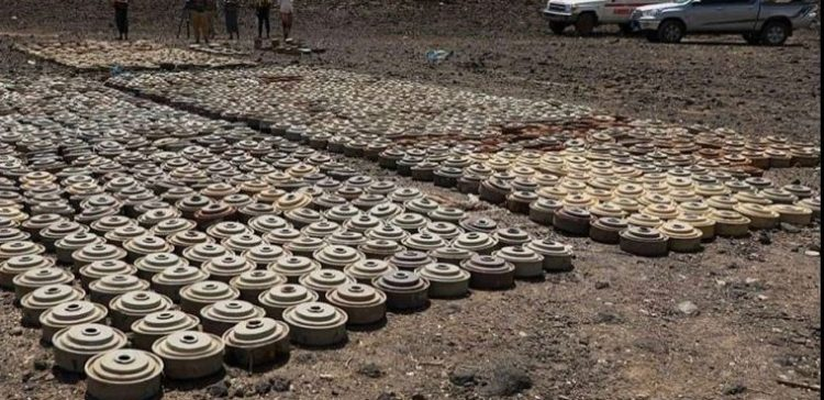 MASAM' removes 1229 landmines in the 4th week of March