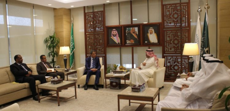 Yemen, Saudi discussed cooperation in training youths